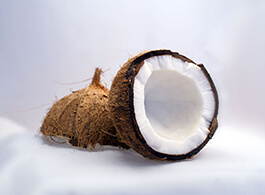 Coconut Extract IMG Home